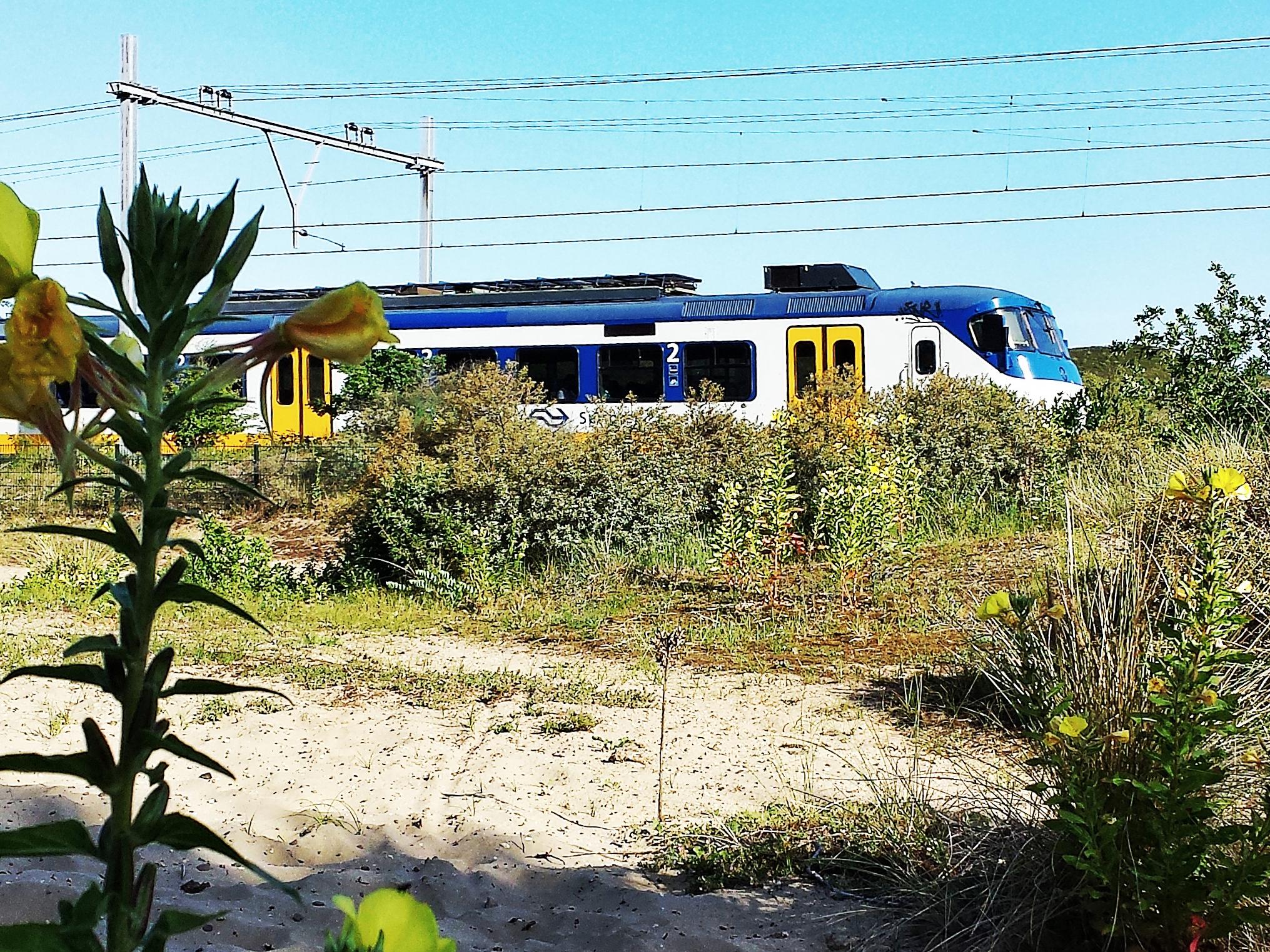 Zandvoort - Haarlem by train